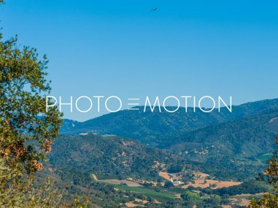 The Eagle has landed – Monterey - PHOTO-E-MOTION