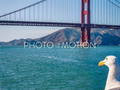 """""""No Fish"""" - PHOTO-E-MOTION"""